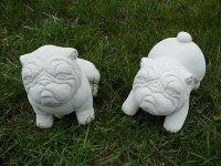Aangeboden: SALTY DOG SET ( 0019 & 0020 ) Honden € 25,-