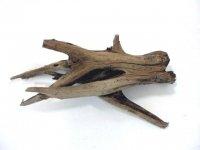 Driftwood, kienhoud grote en kleine stukken