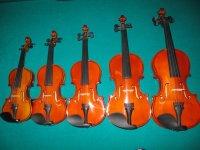 1/16 t/m 4/4 violen en vioolaccessoires