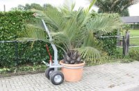 Transportkar voor bomen, planten en andere