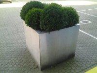 RVS plantenbakken op maat ............................