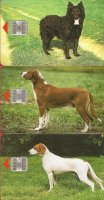 Honden: Croation Breed op telefoonkaart x