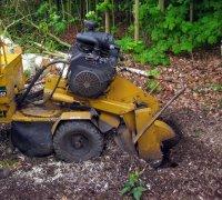 Boomstronk verwijderen met stronkenfrees na boom