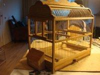 Ouderwetse vogelkooi