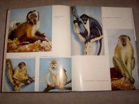 De wereld der dieren:Zoogdieren