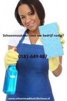 Interieurverzorgster voor uw kantoor in Spijkenisse
