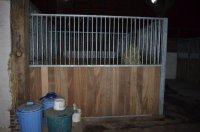 Paardenstallen, stal, paardenbox
