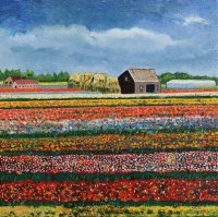 Bollenveld in bloei