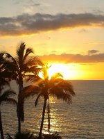 Te huur app.Playa las Americas Tenerife