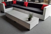 Loungeset lounche set terras tuin wit