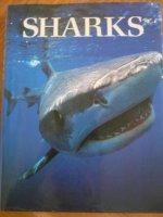 Sharks - Stevens, Pyrzakowski