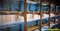 Alles voor uw aquarium & vijver