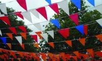 Vlaggenlijnen / Wimpellijnen nodig voor uw