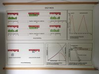 Aangeboden: Wandplaat enzymen € 30,-