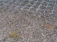Grind neteg Onkruid verwijderen in grind