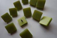 Aangeboden: Set van 12 knopen jaren 60 afmeting 15 x 15 mm. licht gras-groen van kleur € 12,-