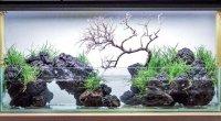 Natuurlijke rots partijen, aquarium steen ,
