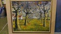 Vlaamse boomgaard van Edgar VanRechem