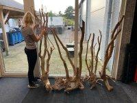 Aquariumhout, Spiderwood XXXL afmetingen tot 2m